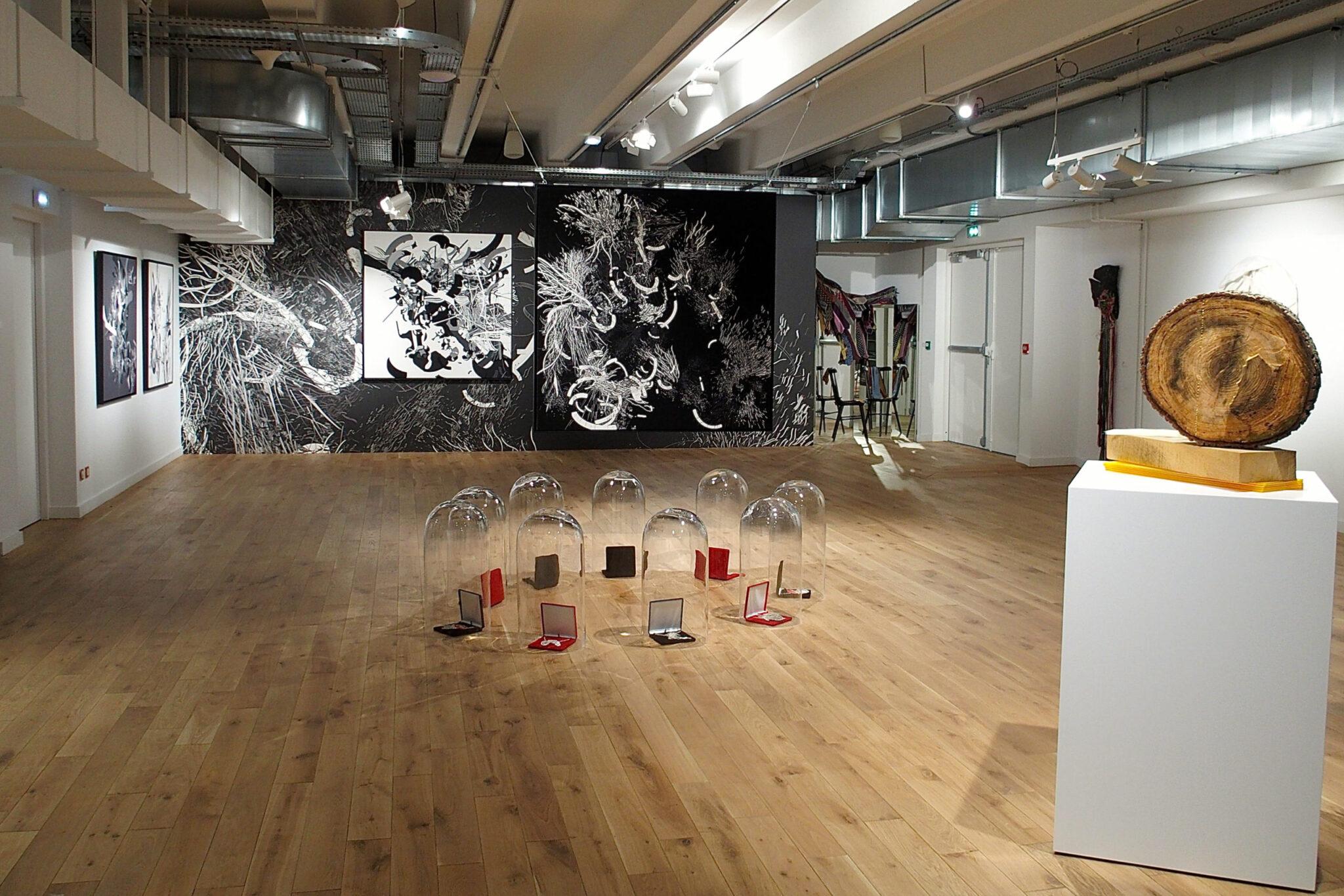audrey-hatchikian-gallery-flagrant-délire-sacha-haillote-rodolphe-barsikian-expo-art-contemporain-6