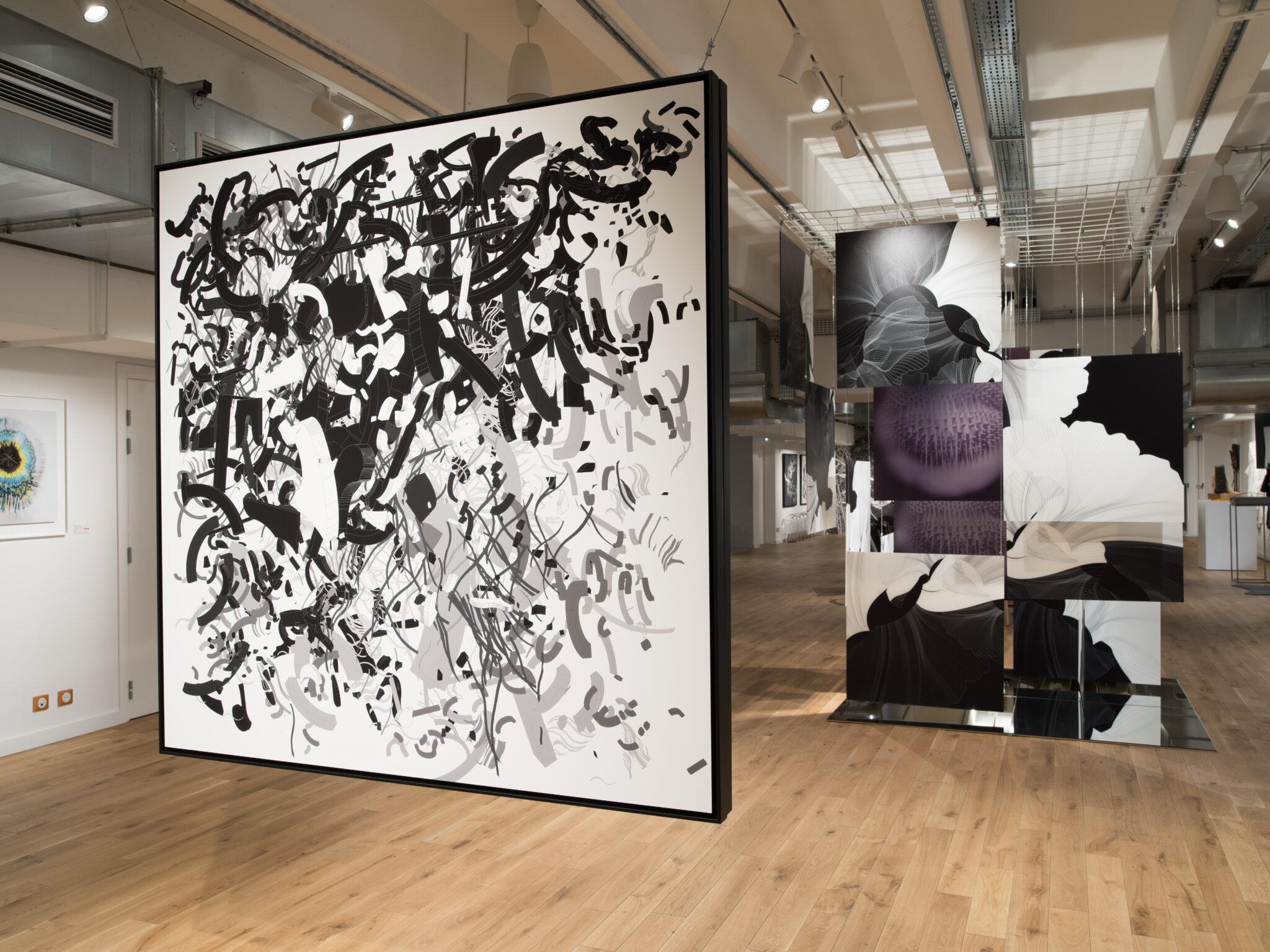 audrey-hatchikian-gallery-flagrant-délire-sacha-haillote-rodolphe-barsikian-exposition-art-contemporain