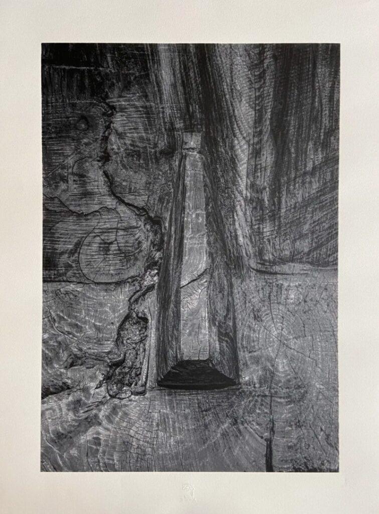 hatchikian-gallery-steph-cop-balint-porneczi-aro-abrazat-2020
