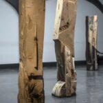 hatchikian-gallery-steph-cop-Robur-173cm-2